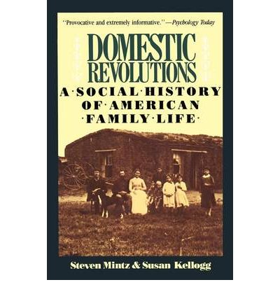 describing the typical american family and its role in the american society The divided society of the old south  discuss the relevant statistics about slave ownership in the south 5 describe the daily lives of a typical planter, a small.