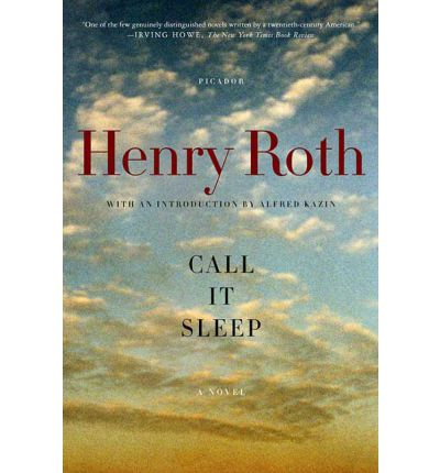 an exploration on immigrant life in call it sleep by henry roth