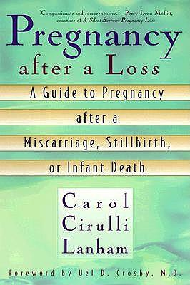 Pregnancy after a Loss: A Guide to Pregnancy after a Miscarriage, Stillbirth or Infant Death
