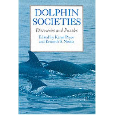 Dolphin Societies