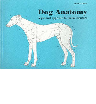 Dog Anatomy : A Pictorial Approach to Canine Structure
