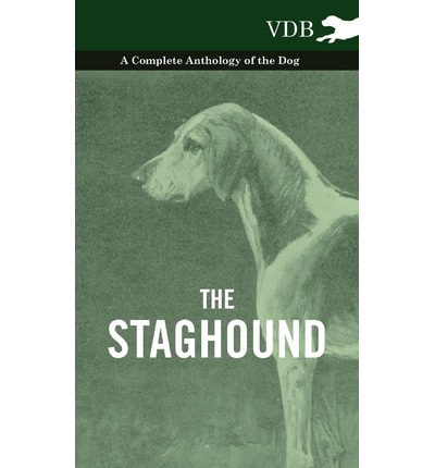 The Staghound - A Complete Anthology of the Dog