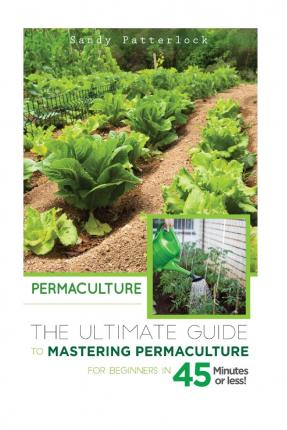 permaculture a beginners guide pdf
