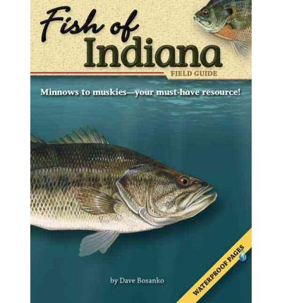 Fish of indiana field guide dave bosanko 9781591932208 for Fish in indiana