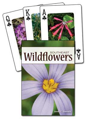 Wildflowers of the Southeast