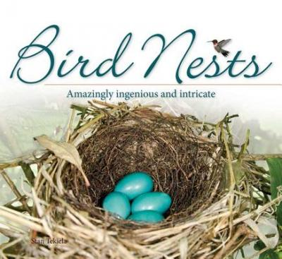 Bird Nests : Amazingly Ingenious and Intricate
