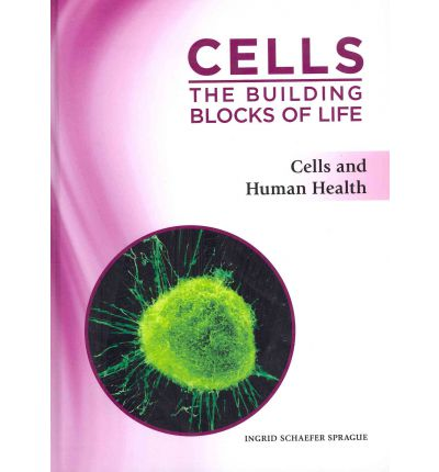 the building blocks of life worksheet Showing top 8 worksheets in the category - cells building blocks of living things once you find your worksheet ch 4 cells: the building blocks of life open in new window.
