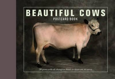 Beautiful Cows Postcard Book