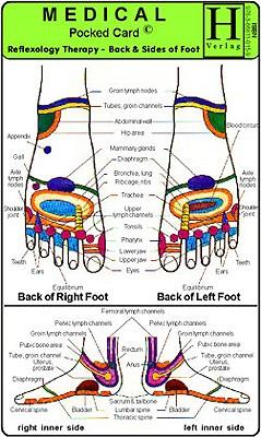 Reflexology Therapy - Back and Sides of Foot : Pocket Medical Card
