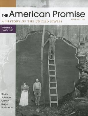 The American Promise, Volume B