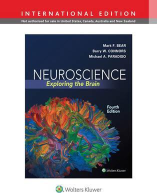 neuroscience exploring the brain pdf bear