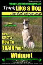 Whippet, Whippet Training AAA Akc