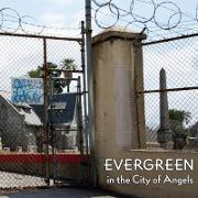 Evergreen in the City of Angels