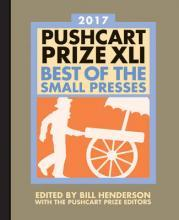The Pushcart Prize XLI